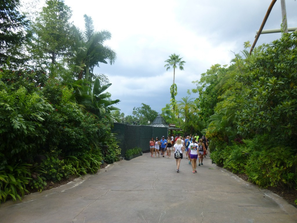 Construction zone  to the left of the path, with Pteranodon Flyers to the right