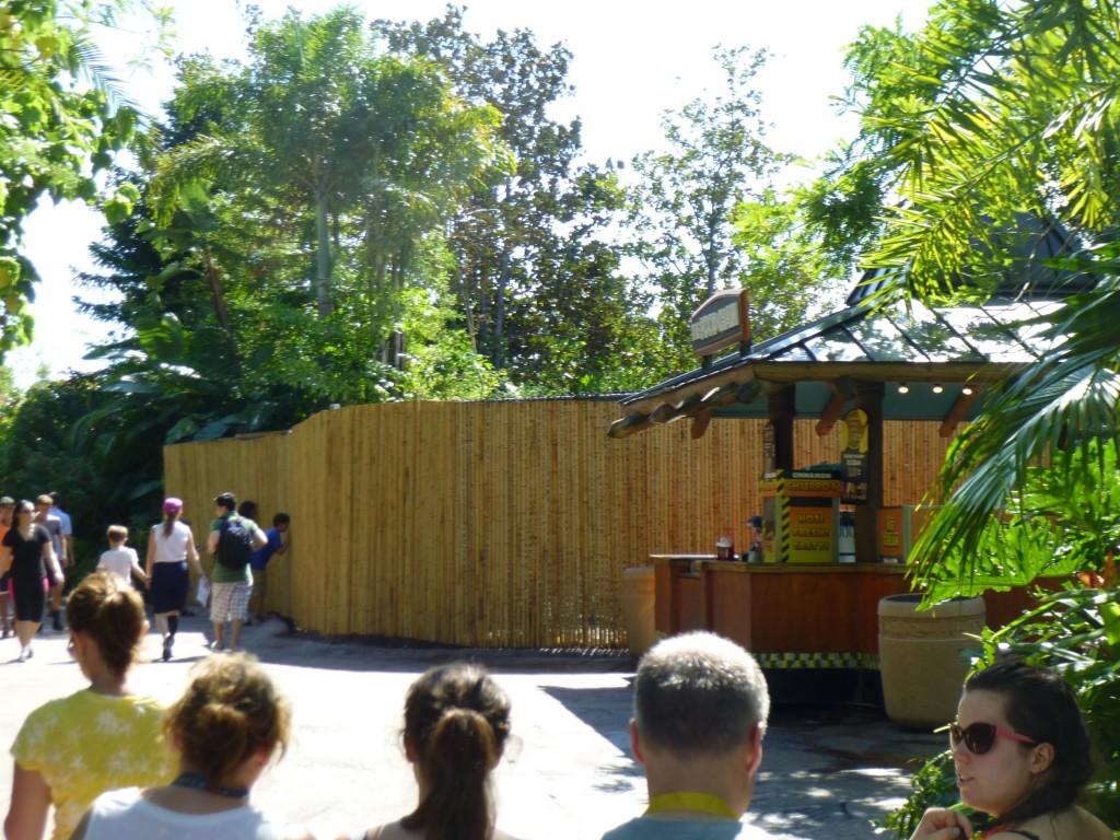 Bamboo Walls