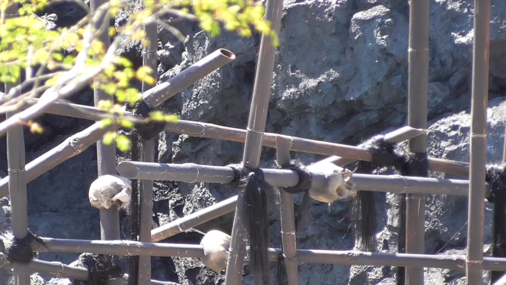 Scary skulls on spears in the center of the ride path