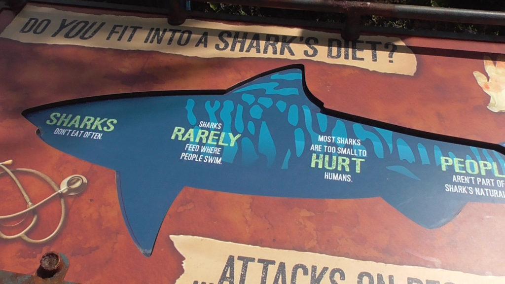 Seeing a hidden message: SHARKS. RARELY. HURT. PEOPLE.