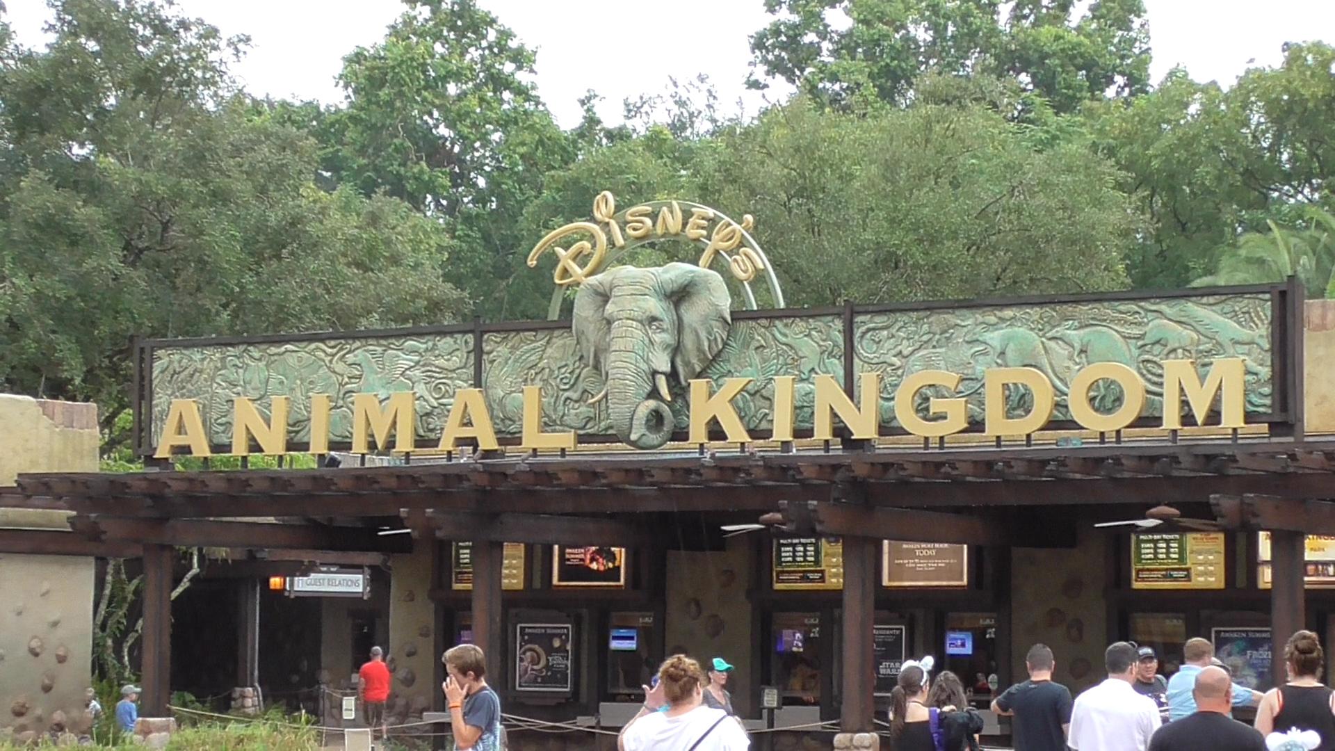 01034MTSStill047 Pandora The World Of Avatar At Disneys Animal Kingdom