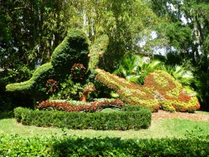 Butterflies topiary