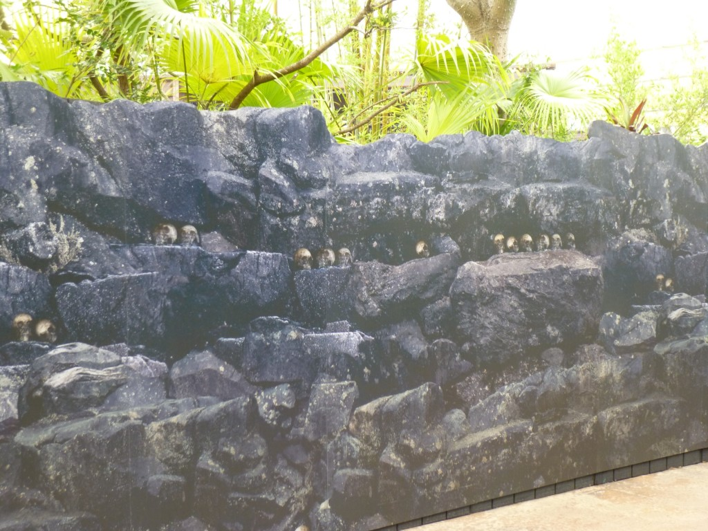 The walls have a repeated pattern with rocks and skulls