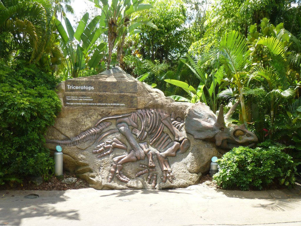 Rumor is the classic Triceratops rock is not being removed. It's very popular for pictures.