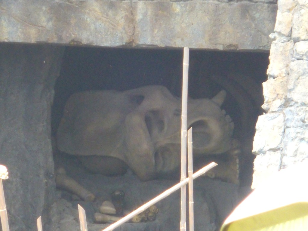 Huge skull and bones seen inside ride vehicle
