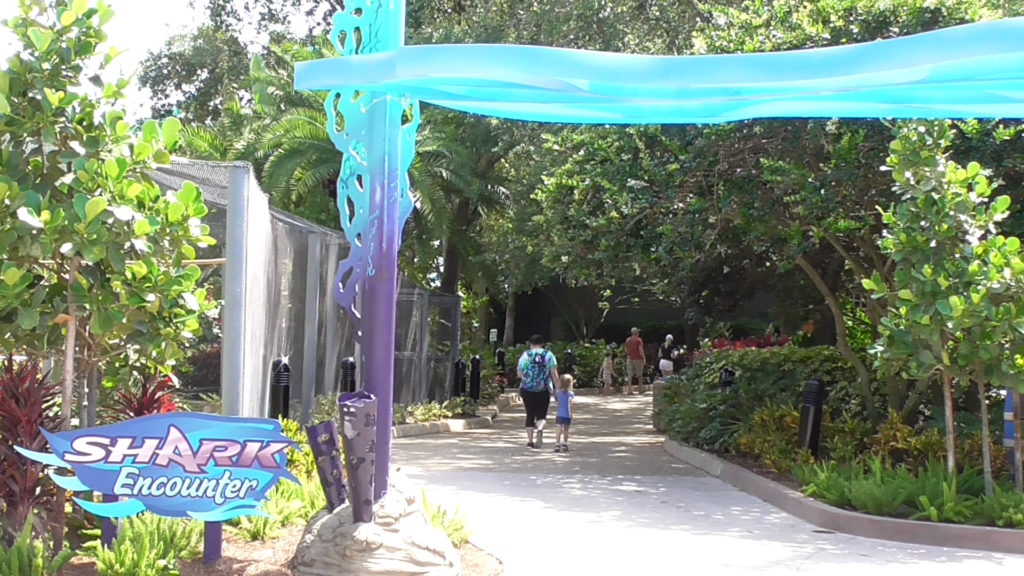 Theming around Shark Encounter entrance