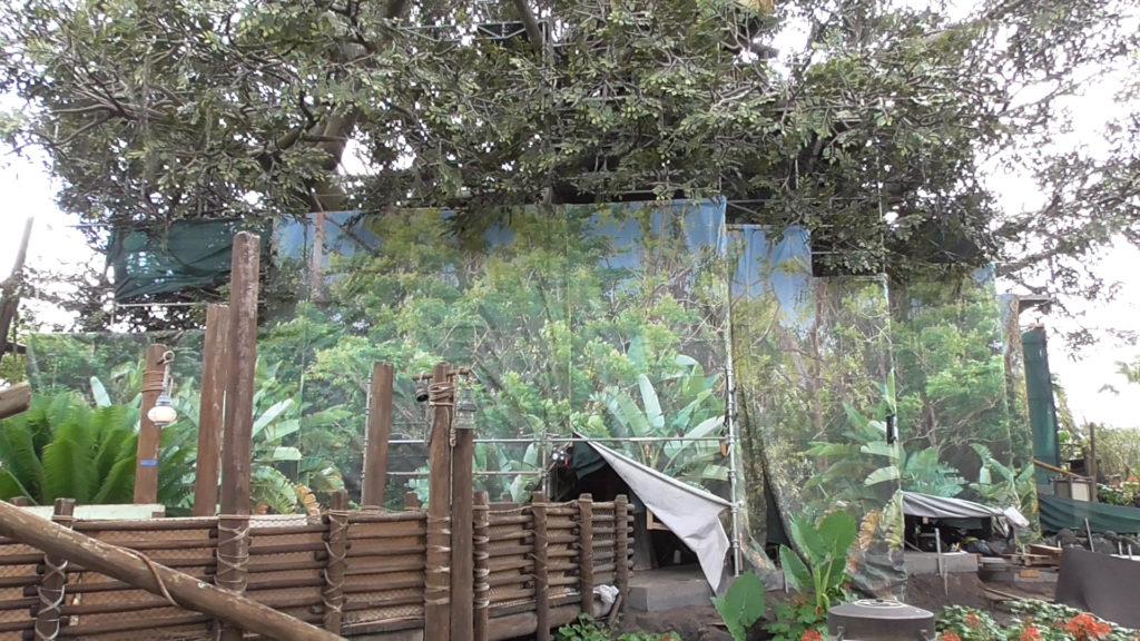 Impressively large jungle scrim
