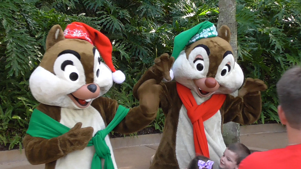 Chip 'n Dale ready for the cold